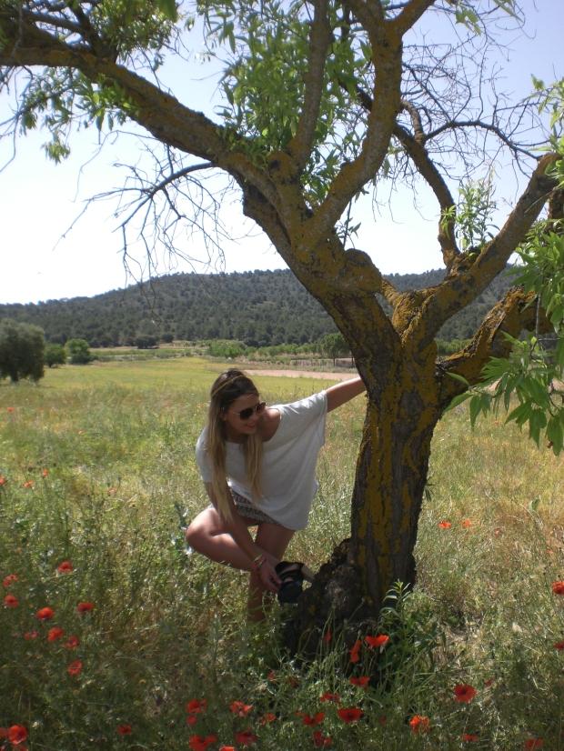 AMAPOLAS (14)