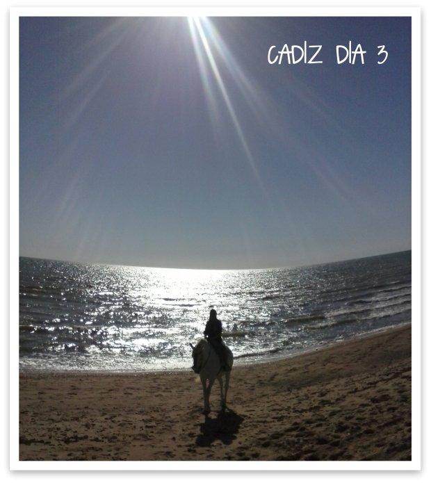 CADIZDIA3